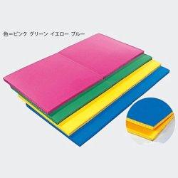画像1: 軽量カラーマット(二つ折り/軽量)