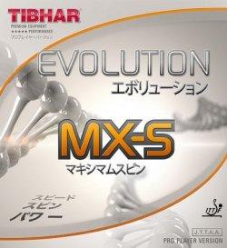 画像1: 《TIBHAR》エボリューション MX-S