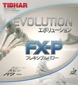 画像1: 《TIBHAR》エボリューション FX-P