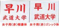 画像1: 《九櫻・ミツボシ》柔道ゼッケン プリント加工/赤字(女子用)